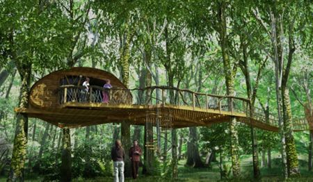Buyagift Two night tree house experience for two