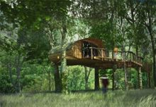 Two night tree house experience for two