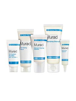 Blemish Control 30 day kit