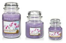Honey blossom medium jar candle