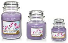 Yankee Candle Honey Blossom Candles