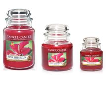 Pink hibiscus candles