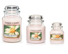 Champaca blossom medium jar candle