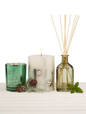 Linea Enchanted Forest scent