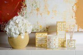 Orla Kiely Fig Tree Fragrance Range