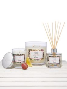 Linea Tropical Lychee Scent Range