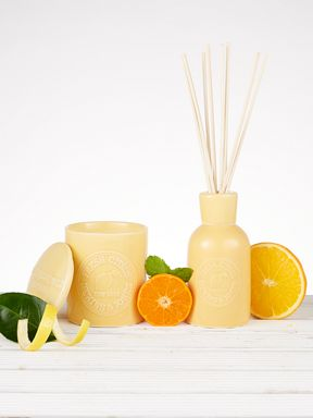 Dickins & Jones Fresh Citrus Fragrance Range