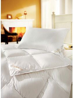 Empress goose down king warm duvet