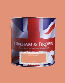Graham & Brown Matt emulsion St Clements paint