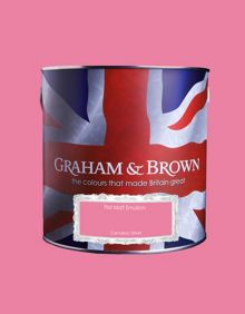 Graham & Brown Matt emulsion carnation street paint