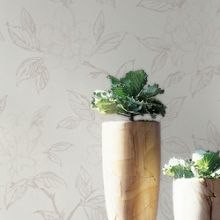 Graham & Brown White Floral Bloom Wallpaper