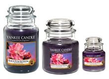 Yankee Candle Black Plum fragrance