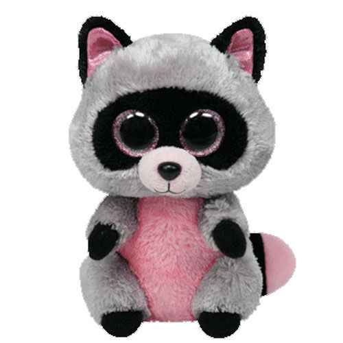 TY Rocco the Raccoon 6 Beanie Boo 36727