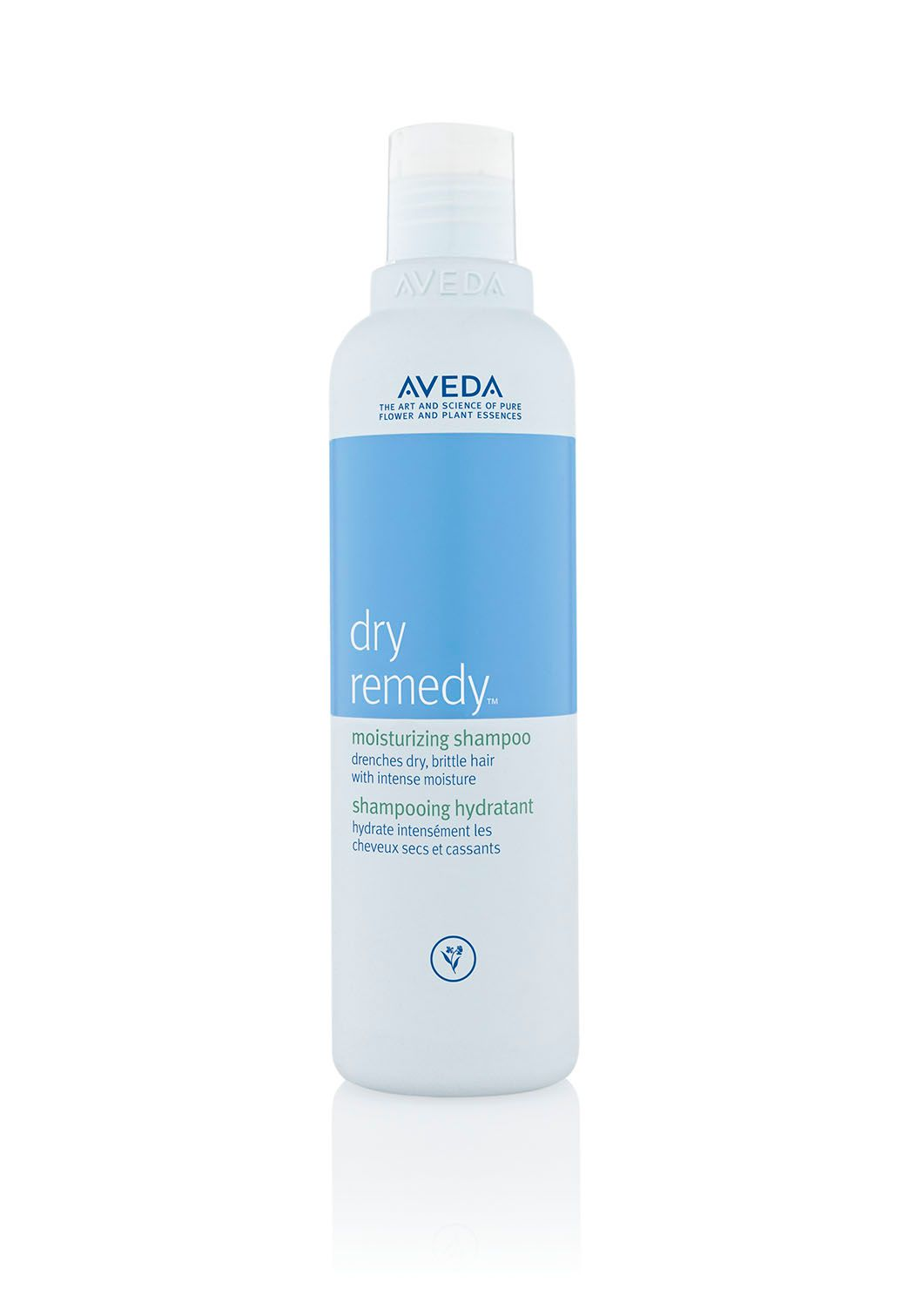 Dry Remedy Shampoo