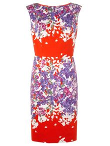 Adrianna Papell Sleeveless floral dress