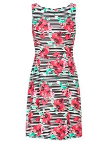 Adrianna Papell Multicolour floral dress