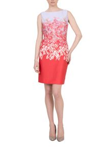 Tahari ASL Floral Print Shift Dress