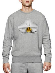French Connection Block Sport Orchid Sweat