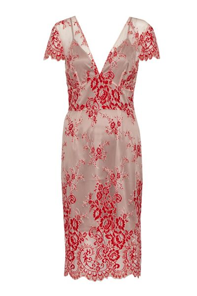 French Connection Rosalie Lace Tea Dress