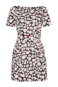 French Connection Bloomsbury Daisy Cotton Dress