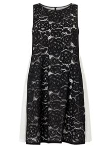 Adrianna Papell Sleeveless Treze Lace Dress