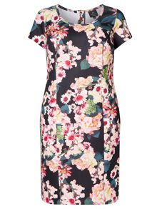 Adrianna Papell Short Sleeve Scuba Floral Dress
