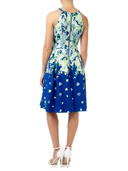Adrianna Papell Floral Garden Party Dress