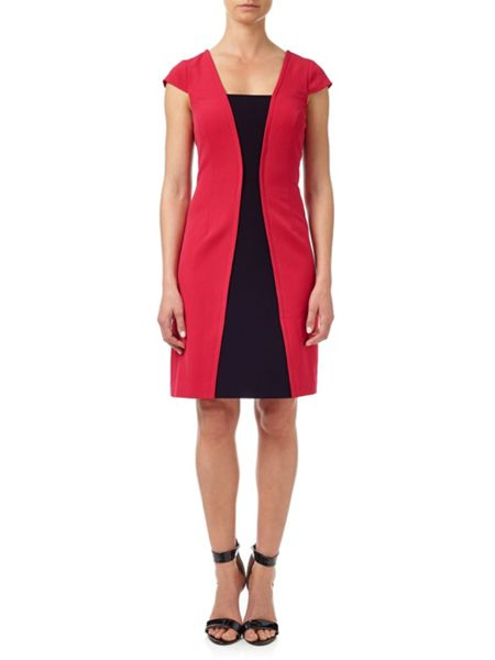 Adrianna Papell Panelled Shift Dress.