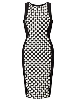 Spotted Sheath Dress