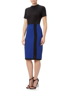 Adrianna Papell Colour Block Sheath Dress