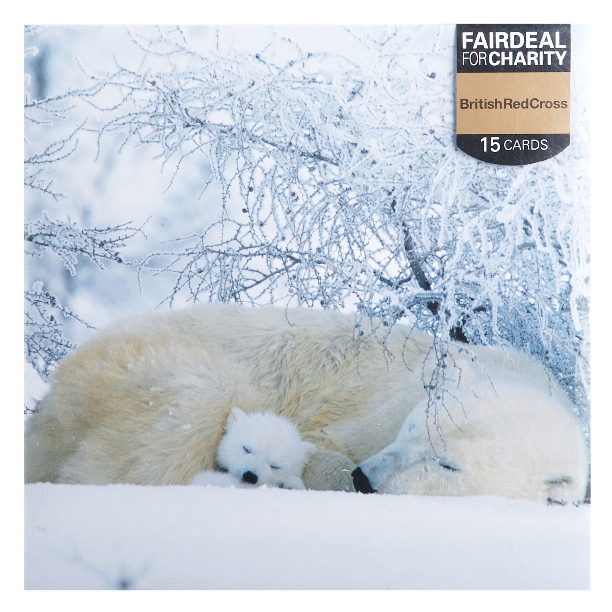 Almanac Sleeping polar bear Christmas cards