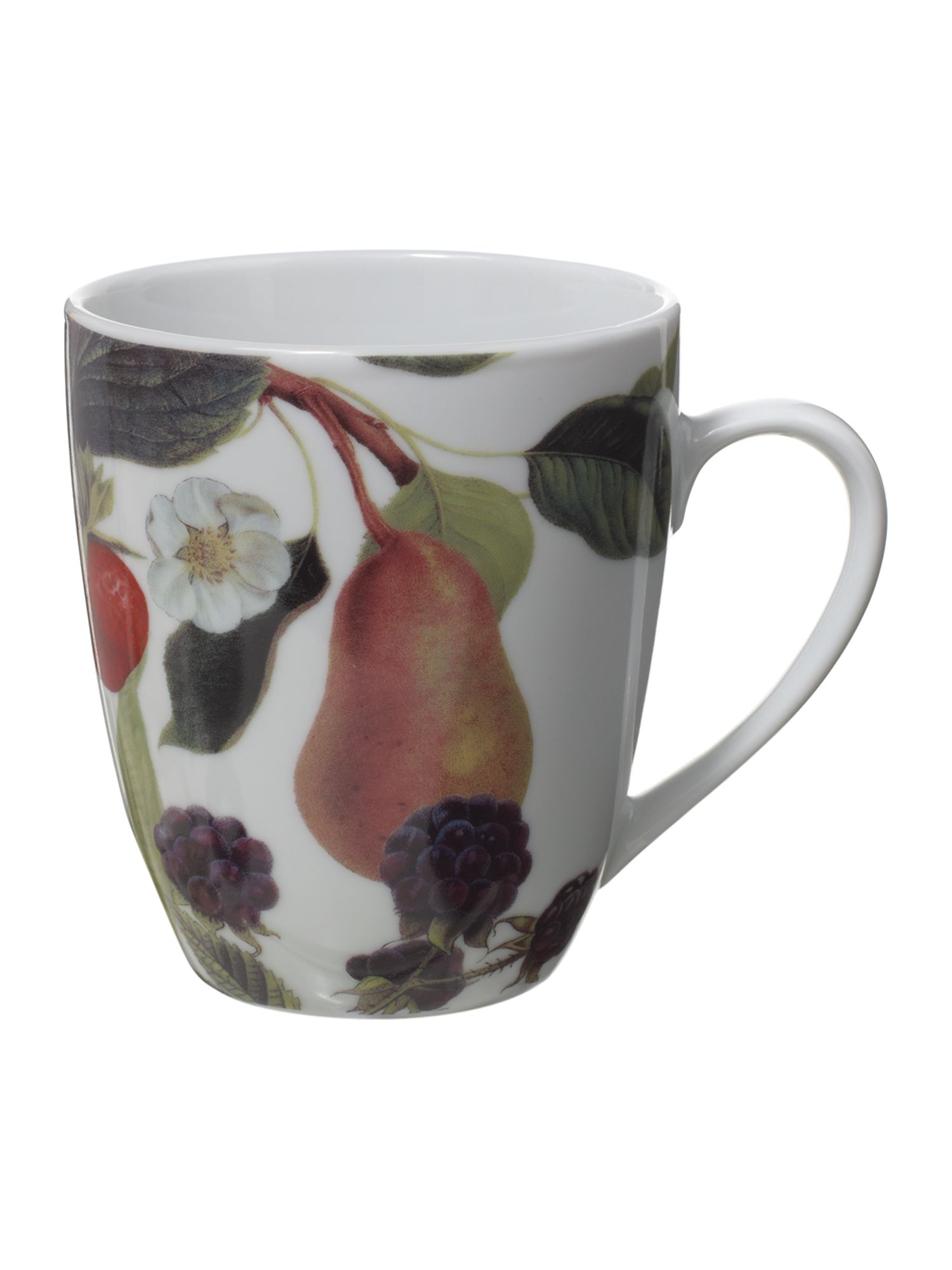 Botanical fruits mug