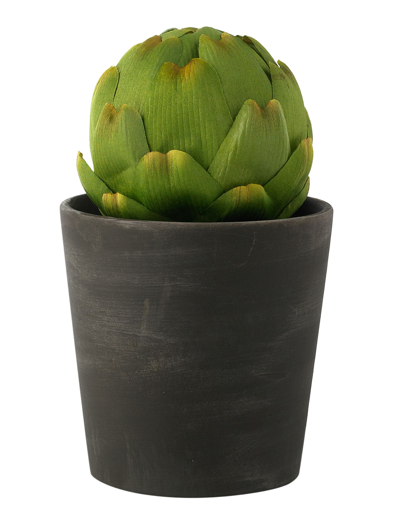 Linea Artichoke in slate pot