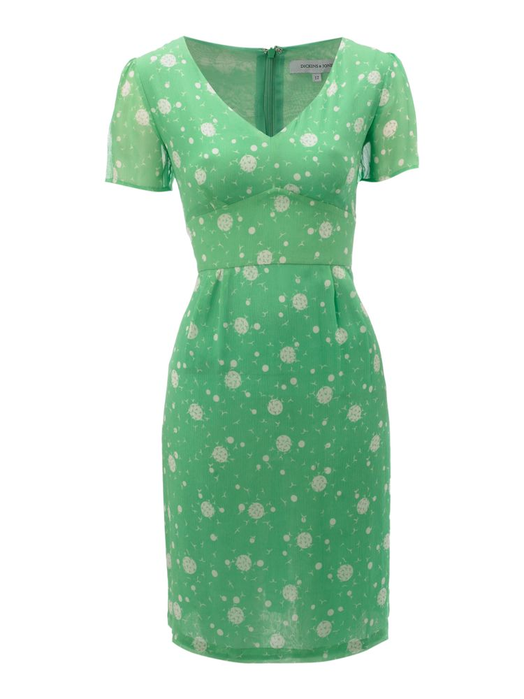 Dickins-Jones-Bird-Print-Tea-Dress-In-Green
