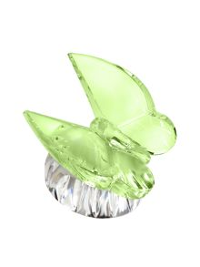 Butterfly collection collectible green