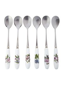 BOT GRDN TEA SPOON SET 6