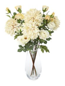 Large cream chrysanthemum single stem