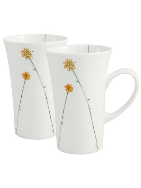 Aynsley Daisychain two latte mugs