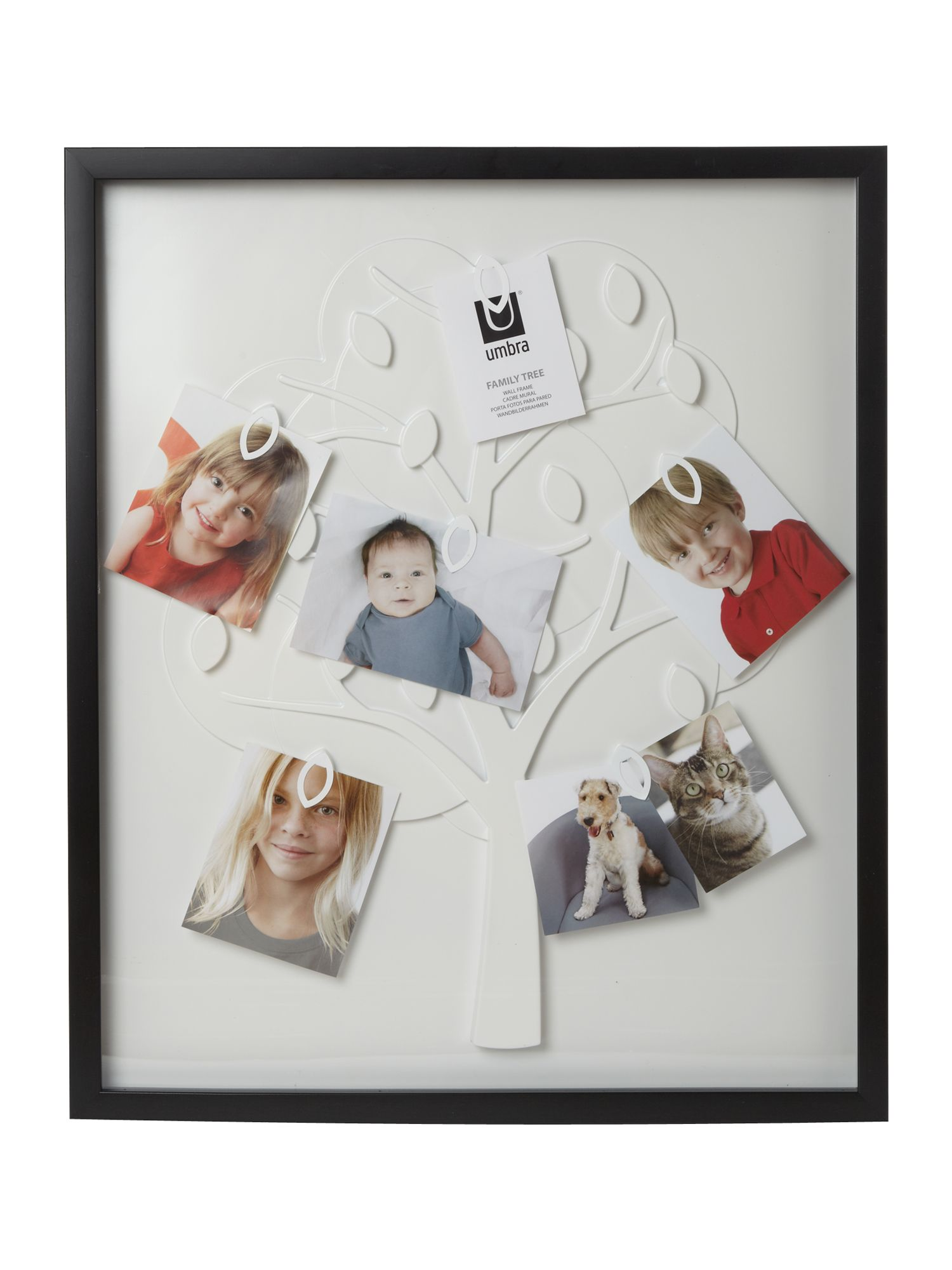 Family tree frame black