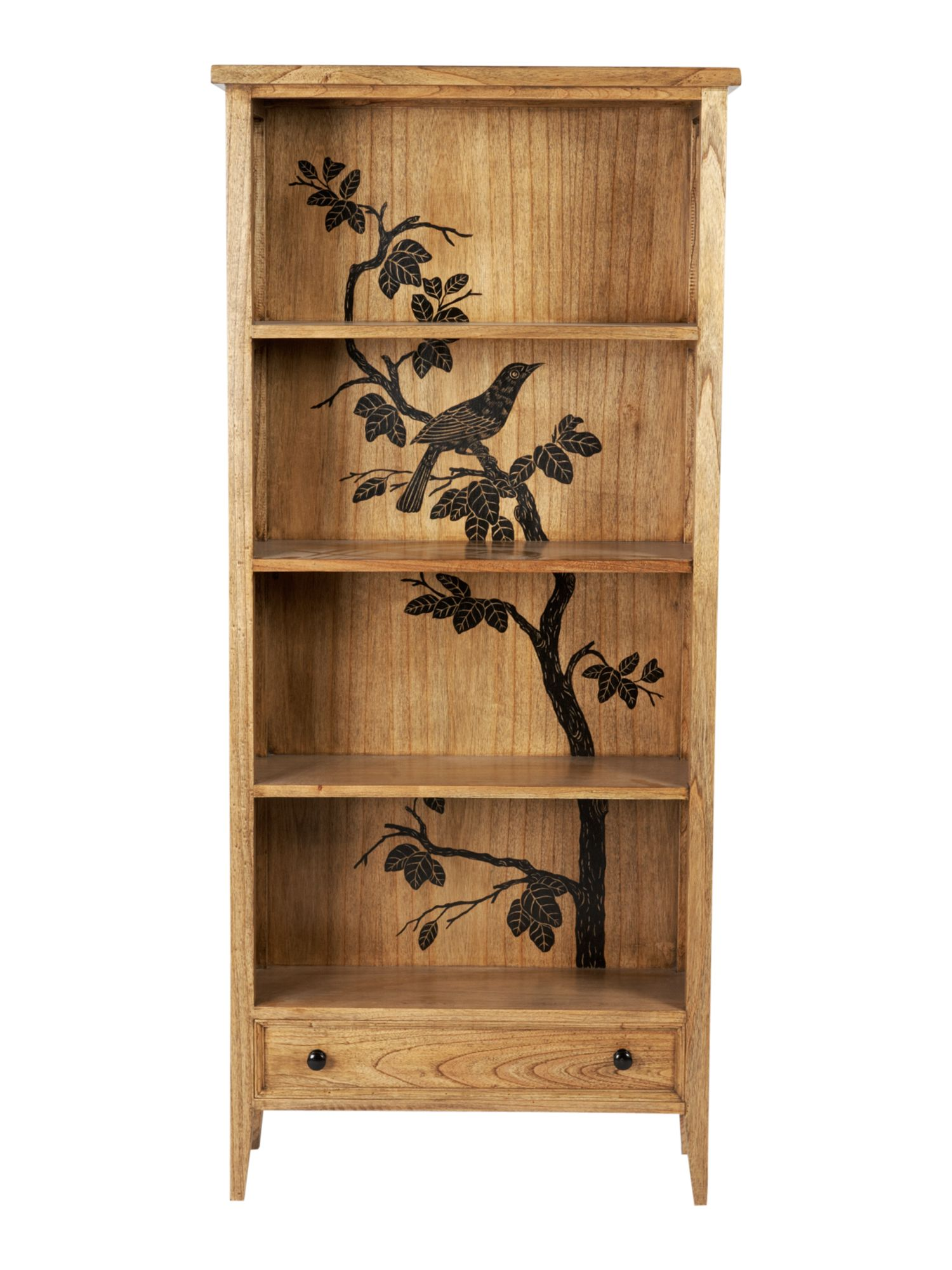 Blackbird bookcase