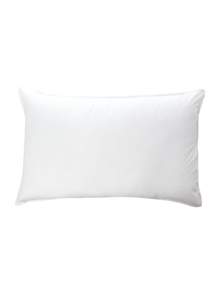 Linea Washable Anti Allergy firm pillow pair