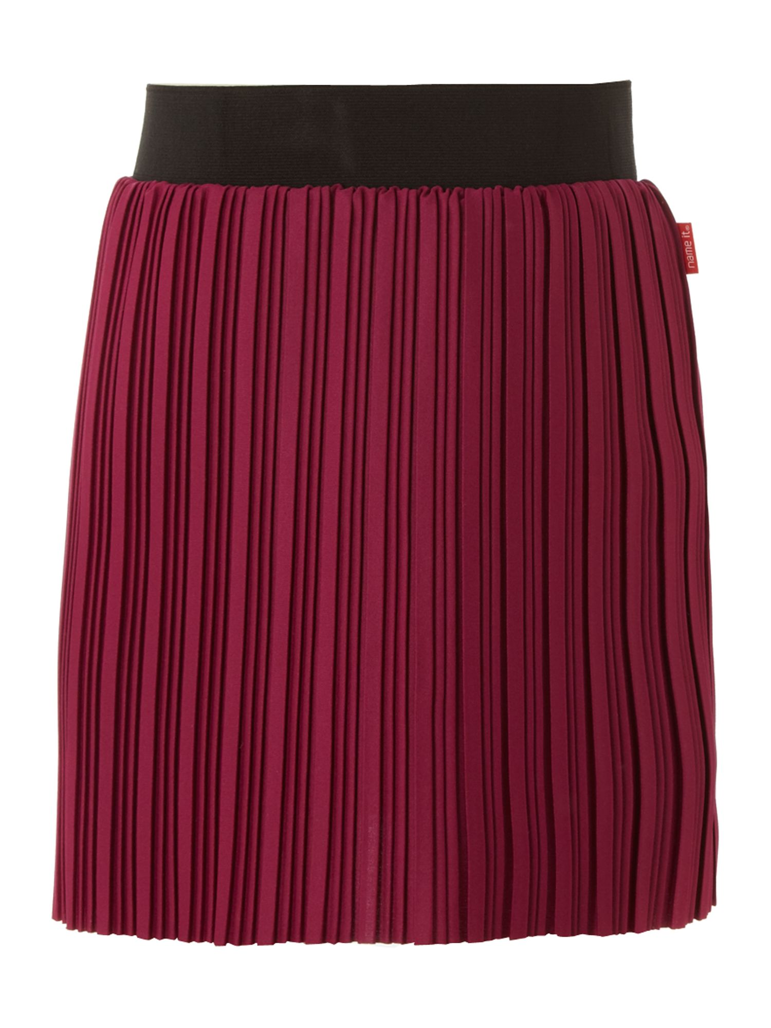 Girl`s fine pleated skirt