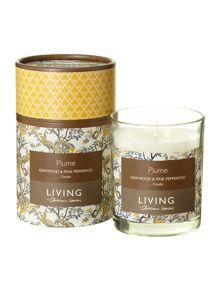 Plume boxed candle