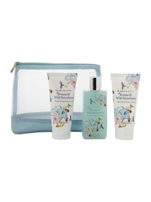 Freesia & Wild Strawberry Travel Essentials