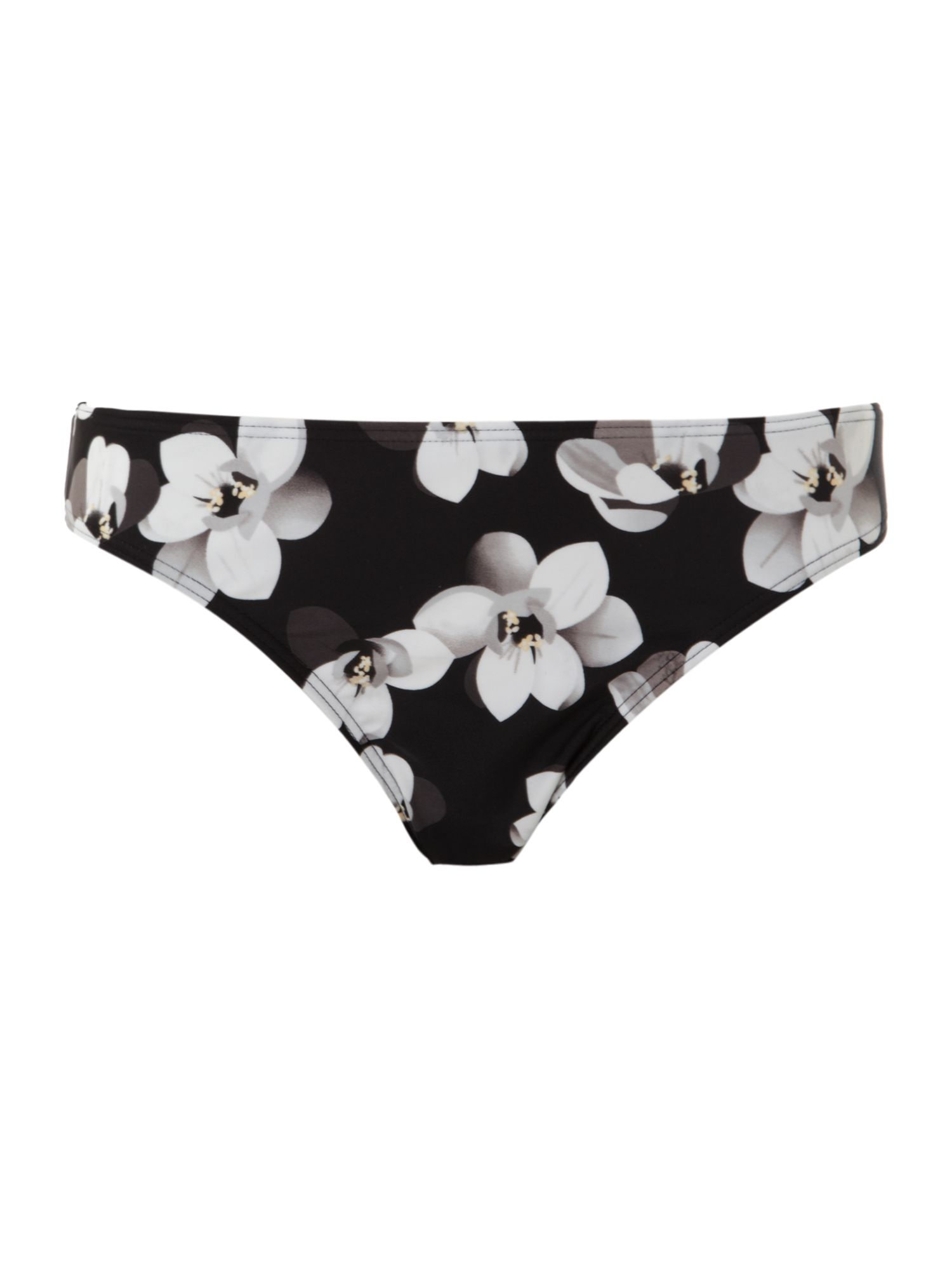 Magnolia brief