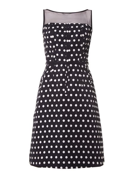 Adrianna Papell Polka Dot Fit and Flare Dress