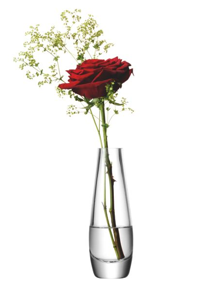 LSA Single stem vase, clear, 17cm
