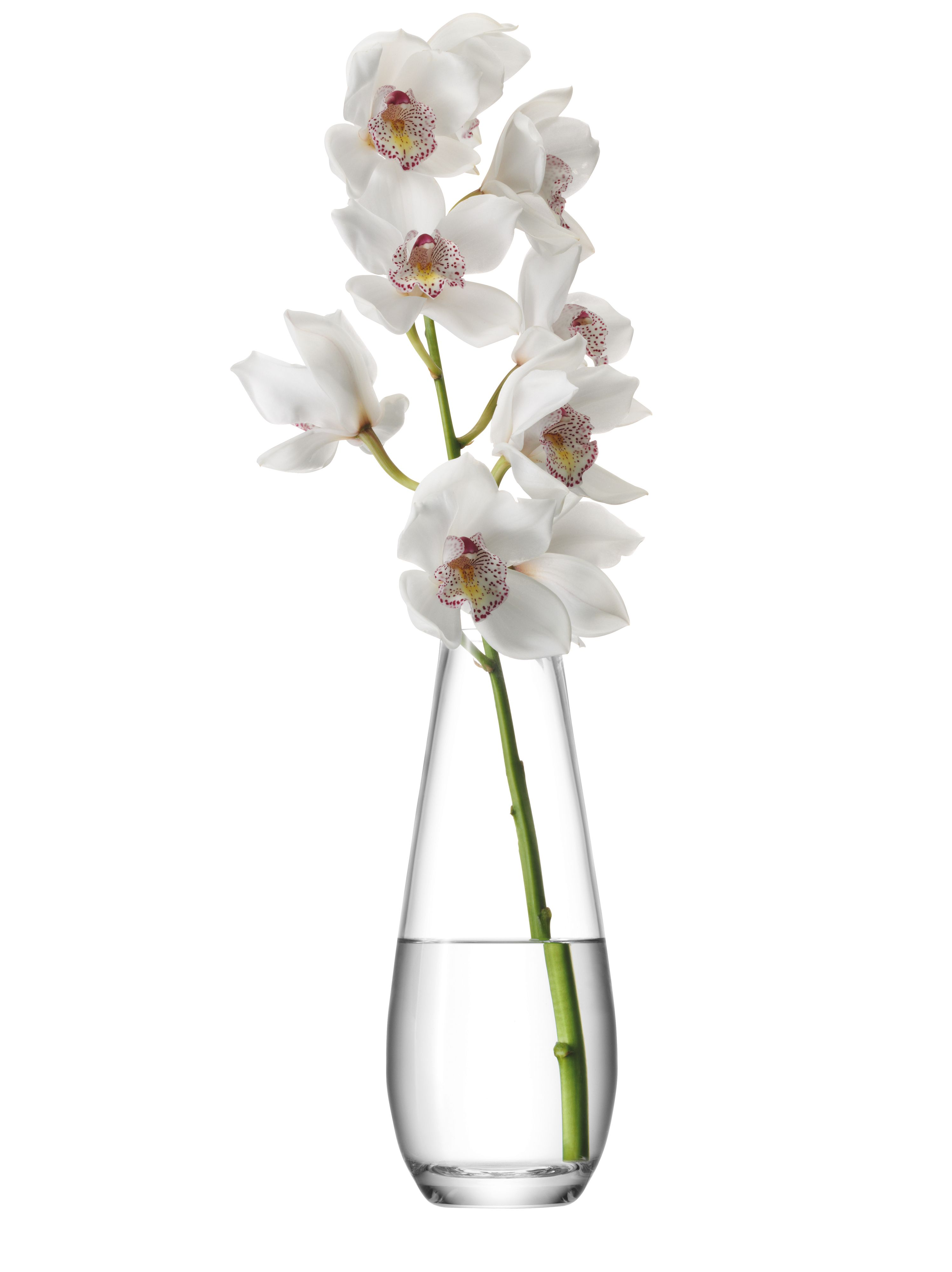 Tall stem vase, clear, 29cm