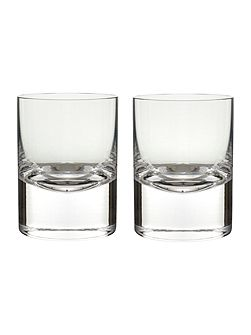 Boris tumbler glasses set of 2