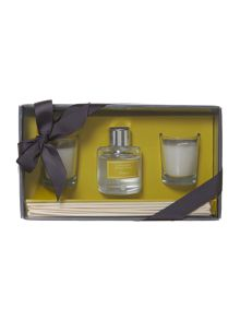 Lemongrass & ginger diffuser & votive set